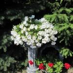 kwiatki-w-arkadii